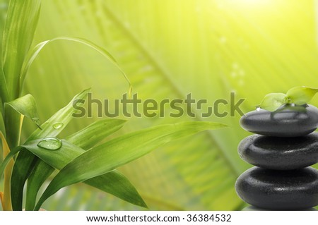 Spa still life , with bamboo leafs and massage stones - stock photo