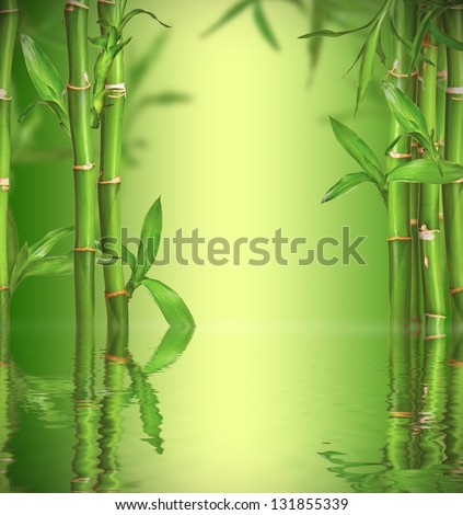 Spa still life with bamboo sprouts, free space for text - stock photo