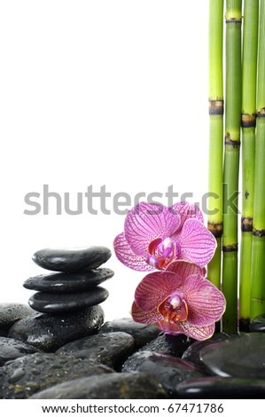 Spa still life with bamboo stem and orchid flowers on pebble stones stack in balance - stock photo