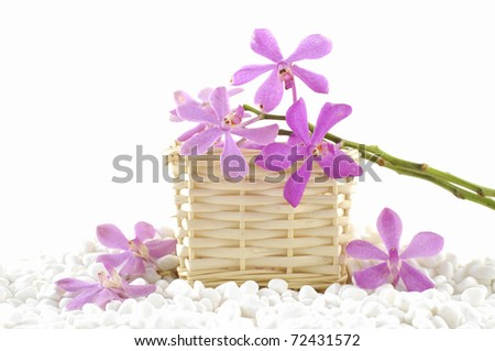 Spa still life with basket of pink orchid on white pebble - stock photo