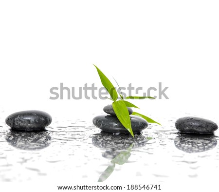 Spa still life with black stones and bamboo leafs - stock photo
