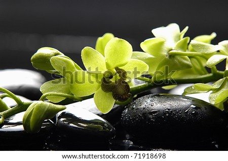 Spa still life with branch green orchid on pebble - stock photo