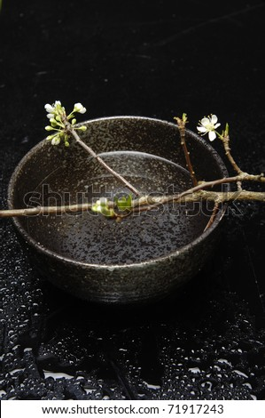 Spa still life with branch of pink cherry blossom sakura in bowl - stock photo