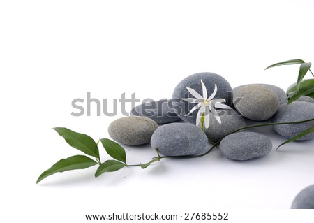 Spa still life with flower and leafs - stock photo