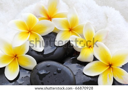 Spa still life with frangipani flowers,white towel and zen stone - stock photo