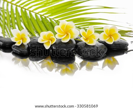 Spa still life with frangipani ,palm and black stone - stock photo