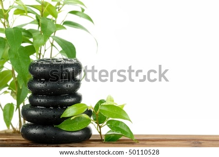 Spa still life with fresh green leaves and zen stone on white background. - stock photo