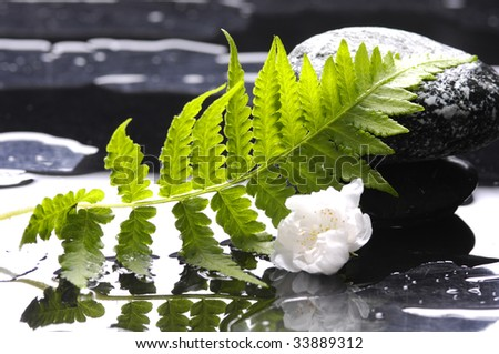 Spa still life with green leaf - stock photo