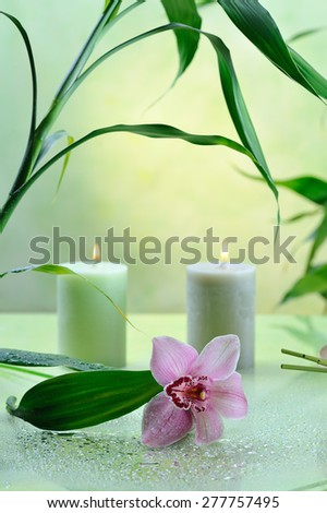 spa still life with lilac orchid on green background - stock photo