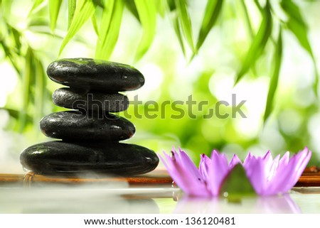 Spa still life with lotus and zen stone on water,bamboo leaf background.