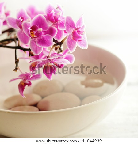 SPA still life with orchid flowers, pebbles and water - stock photo
