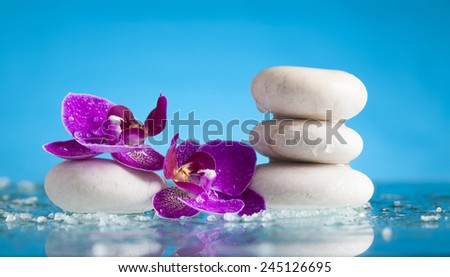Spa still life with pink orchid and white zen stone in a serenity pool - stock photo