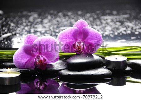 Spa still life with set of pink orchid and stones reflection - stock photo