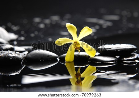 Spa still life with tropical orchid on pebble - stock photo