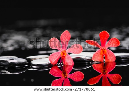 Spa still life with two red orchid with therapy stones - stock photo