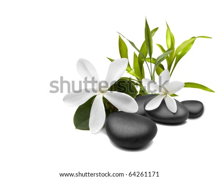 Spa still life with white flowers - stock photo