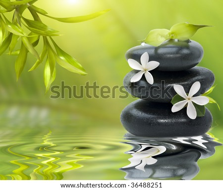 Spa still life, with white flowers on the black stones and bamboo leafs - stock photo