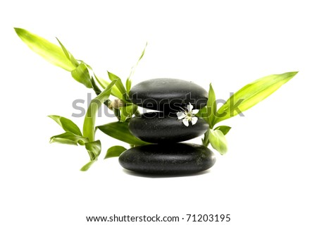 Spa still life with white flowers with bamboo leaves - stock photo