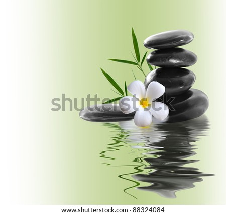 Spa still life with yellow flowers - stock photo