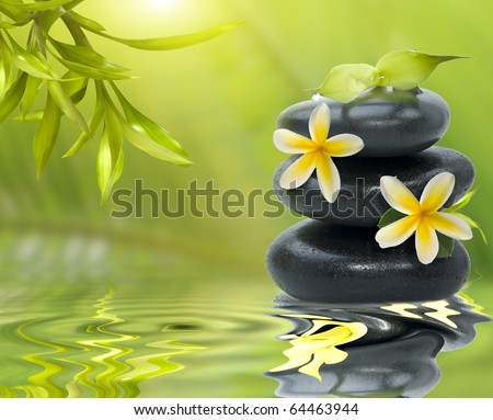 Spa still life, with yellow flowers on the black stones and bamboo leafs - stock photo