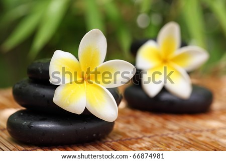 Spa still life with zen stones,frangipani flower,Shallow Dof. - stock photo