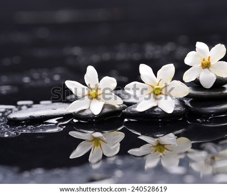 Spa still with three white gardenia on pebbles - stock photo
