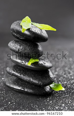 Spa stone with green leaf - stock photo