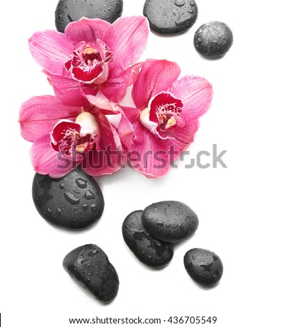 Spa stones and beautiful pink orchids on white background