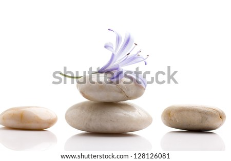 Spa stones and lilac flower, isolated on white background. - stock photo