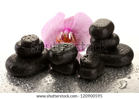 Spa stones and orchid flower, on wet background
