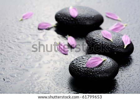 spa stones and petals - stock photo