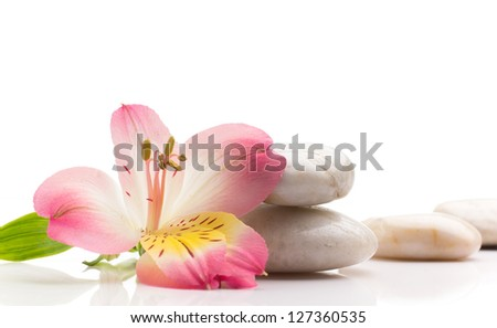 Spa stones and pink flower, isolated on white background. - stock photo