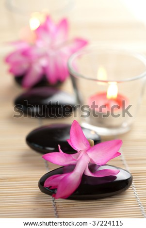 spa stones and pink flowers over bamboo mat - stock photo