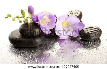 Spa stones and purple flower, isolated on white - stock photo