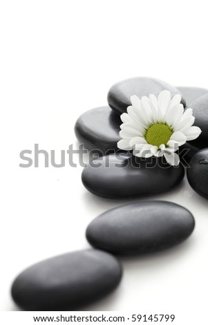 Spa stones and white daisy