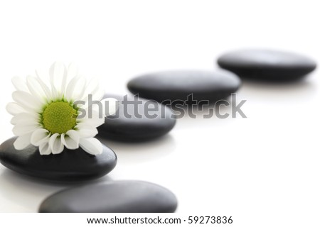 Spa stones and white daisy - stock photo