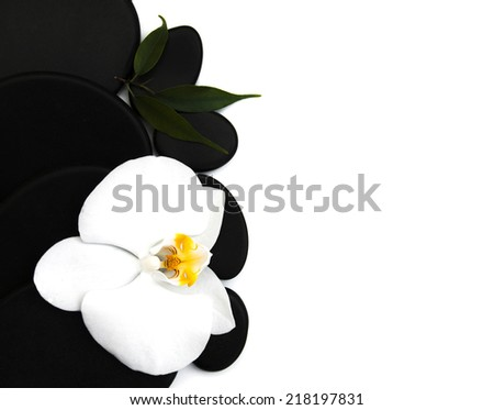 Spa stones, orchid flower heads on a white background - stock photo