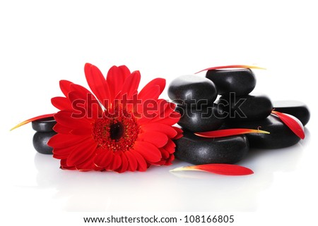 Spa stones, red flower and petals isolated on white - stock photo