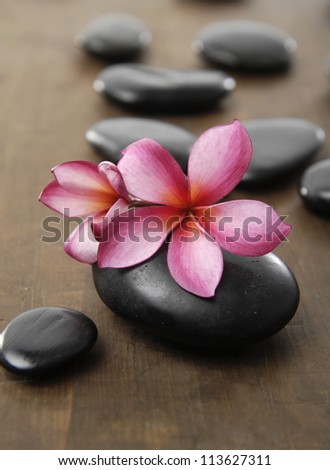 Spa stones with frangipani flower arranged on wooden board - stock photo