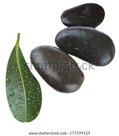 Spa stones with green leaf, isolated on white