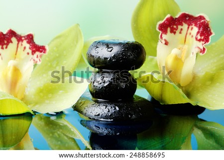 Spa stones with water drops and beautiful blooming orchid in water on natural background - stock photo