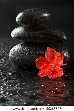 spa stones with water drops on black - stock photo