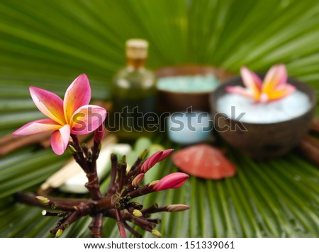 spa supplies with branch frangipani. Salt in bowl, oil, palm leaf   - stock photo