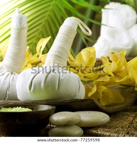 Spa Thai Massage - stock photo