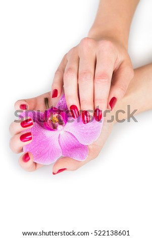 Spa theme close up over top of pretty hands holding orchid flower over white with subtle set down shadow