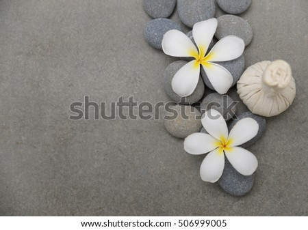 spa theme objects with flower and Herb ball grey background.