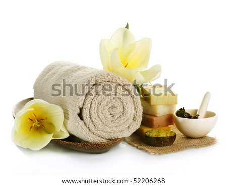 Spa treatment isolated on white - stock photo
