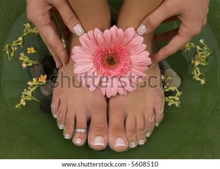 Spa treatment with elegant pink gerbera - stock photo