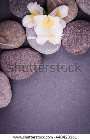 Spa with stone, rock for zen, beauty, balance, wellness, flower branch on dark, gray background. Concept of health, therapy, relaxation. Massage treatment for tranquil and harmony - stock photo