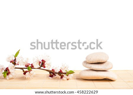 Spa with stone, rock for zen, beauty, balance, wellness, flower branch on white background. Concept of health, therapy, relaxation. Massage treatment for tranquil and harmony - stock photo